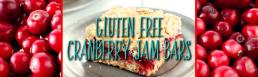 Gluten Free Cranberry Jam Bars